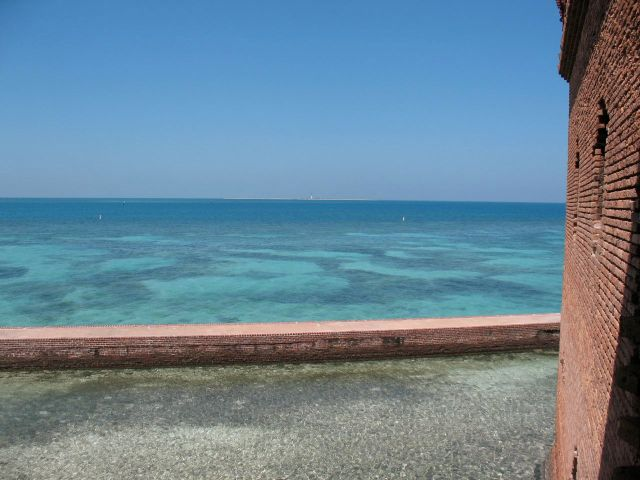 Coral at Fort Jefferson