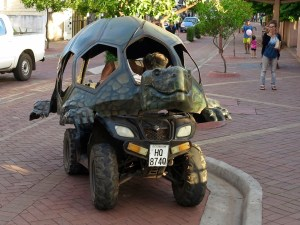 Turtle ATV