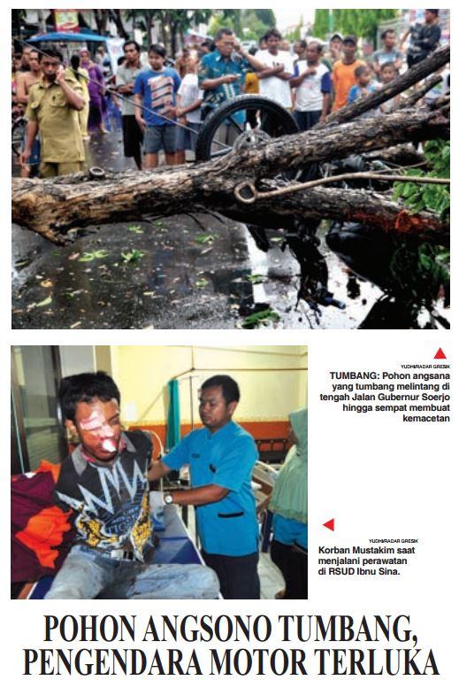 motor korban pohon tumbang di gresik hari selasa 29 Desember 2015