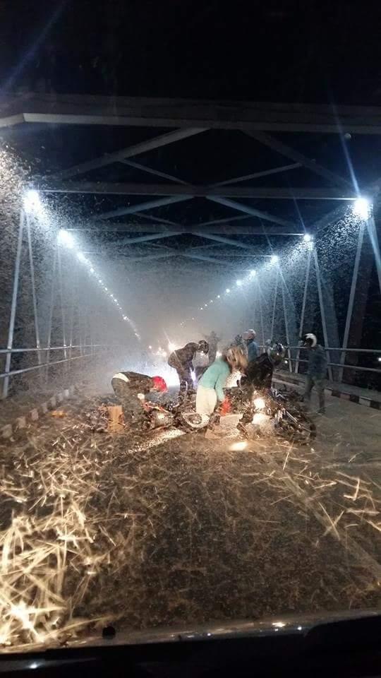 jutaan laron menyerang jembatan mengkreng dj Kertosono hari minggu 3 juli 2016
