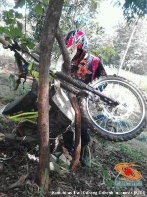 parkir unik motor trail di pohon