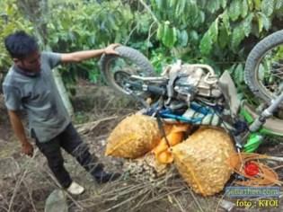 resiko ojek motor cadas di tengah hutan