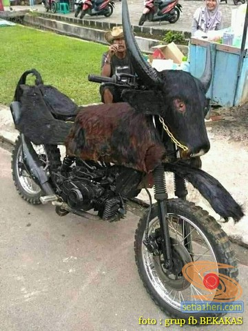 Wow Yamaha F1ZR dimodif banteng atau kerbau brosis. (2)