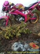 Kumpulan gambar modifikasi Yamaha Vixion warna pink brosis (9)