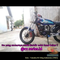quote biker rx king (3)