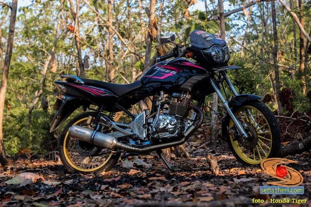 Modifikasi headlamp Honda Tiger Revo pakai Daymaker