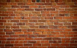 گفتگو با دیوار