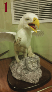 The taxidermy Griffin is ready to pounce! Photo courtesy of D.DeClaudio/Setonian