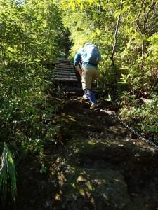 きれいに整備された急登を登る
