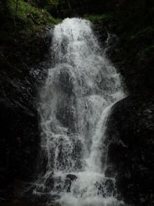 大きめの滝もある