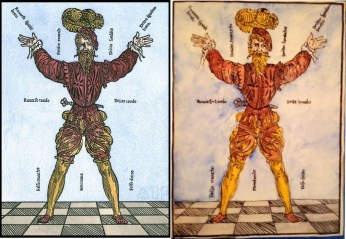Men standing for comparison