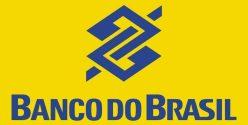 Banco do Brasil lança cartão que acumula pontos com reais e sem anuidade por um ano