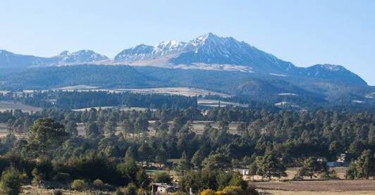Falso que se autorice tala de árboles en Nevado de Toluca