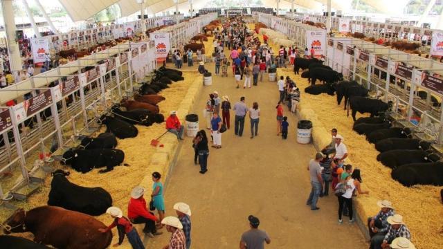 Tenango del Valle sede de la expo feria agropecuaria, industrial y artesanal 2017