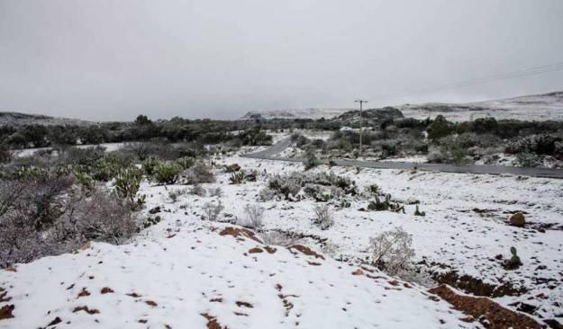Prevén caída de nieve en cinco estados