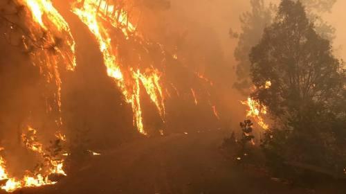 Luchan por combatir 5 incendios en Morelos