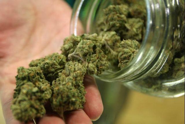 Aprueban Diputados uso medicinal de la mariguana
