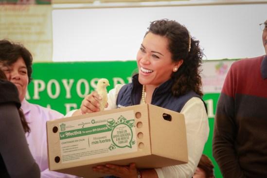 Avicultura: apoyo para el sustento familiar en Atlacomulco
