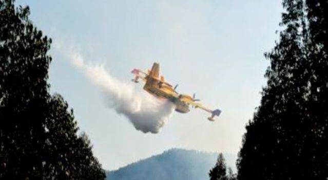 Avión que combatía incendios se estrella en Portugal