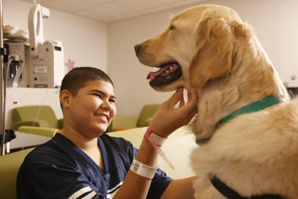 Terapia canina contribuye a mejoramiento de niños enfermos