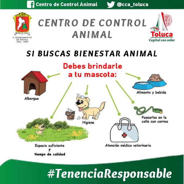 Necesaria la Tenencia Responsable de Animales de Compañía