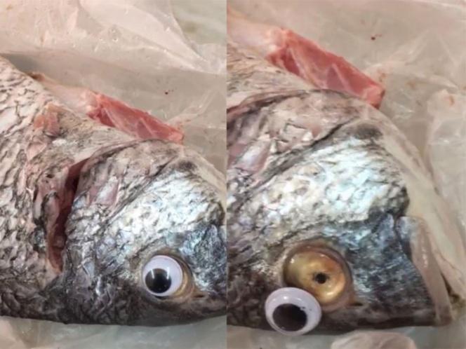 Ocultan mal estado de pescado con ojos de plástico