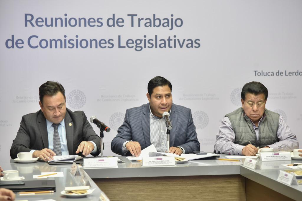 Aprueba la Comisión del OSFEM terna para auditor superior