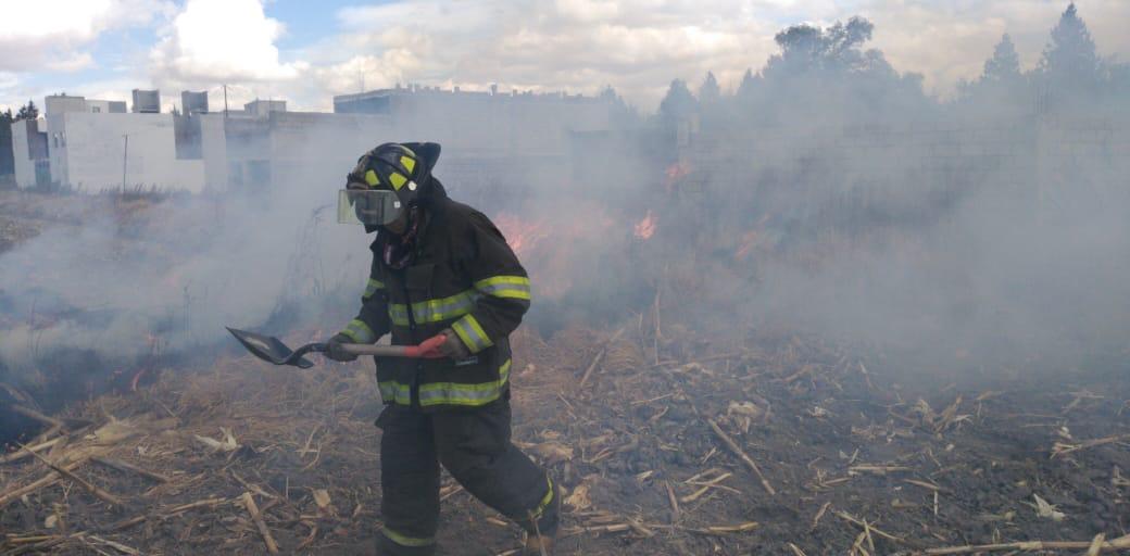 México registra 4,676 incendios forestales en lo que va del año