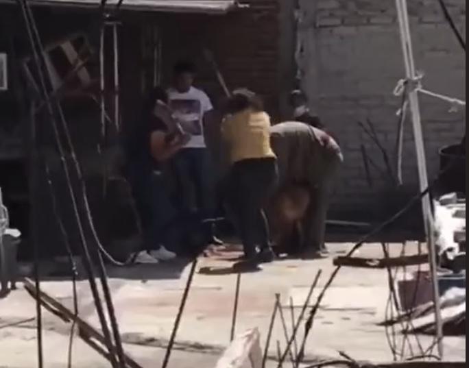 Graban a familia que mató a golpes a un perro en Tlalnepantla