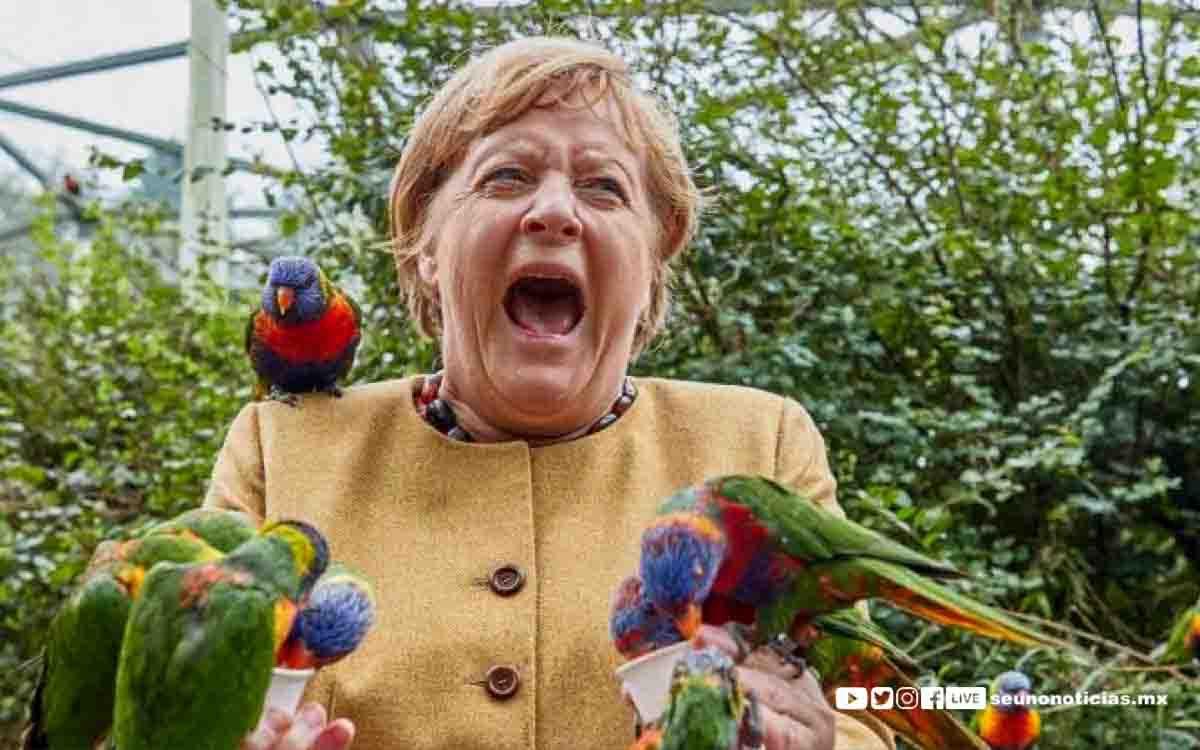Ave muerde a Angela Merkel la foto se hace viral
