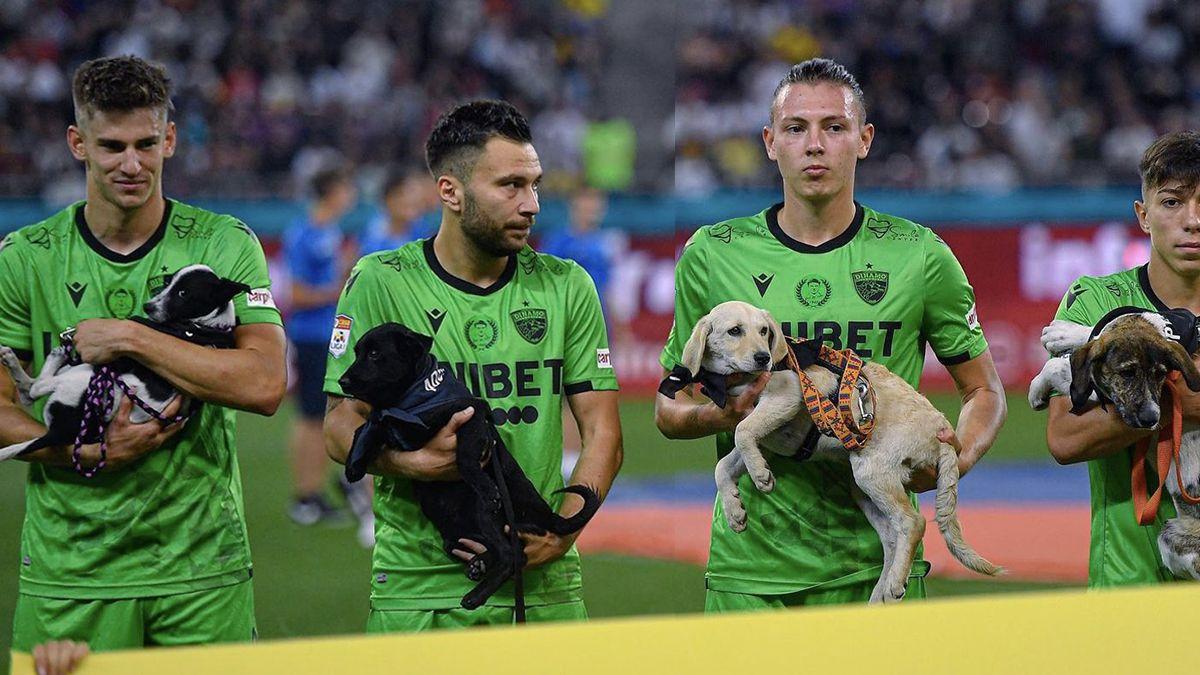 Jugadores rumanos saldrán al campo con cachorros