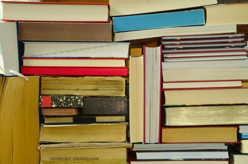 condesign_books-1260734_1920_pixabay_kleiner