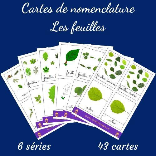 cartes de nomenclature feuilles
