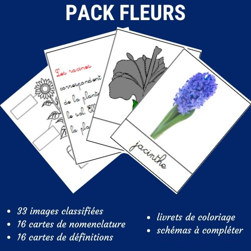 activités montessori fleurs