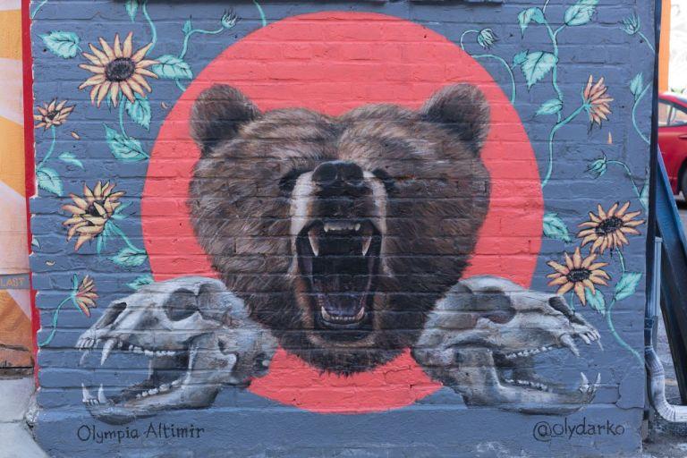 Медведь. Freak Alley Gallery в Бойсе