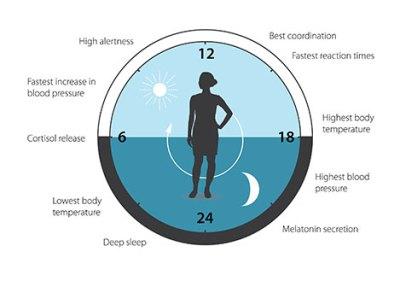 ciencia - press figure3