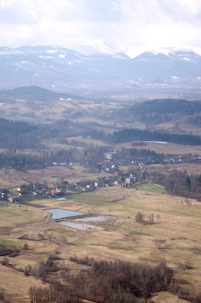 Sokoliki IMGP3018