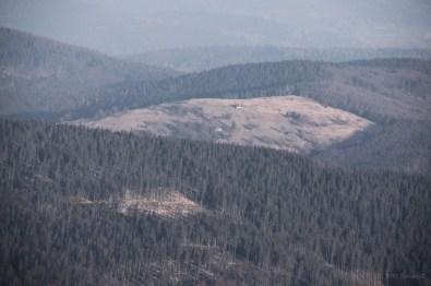 Babia Gora Swit- 28