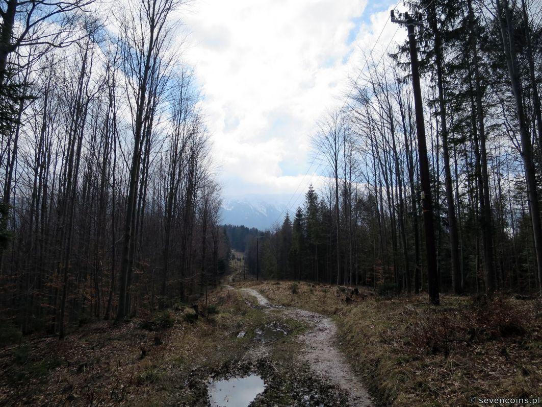 Zielony szlak spod Mosornego Gronia
