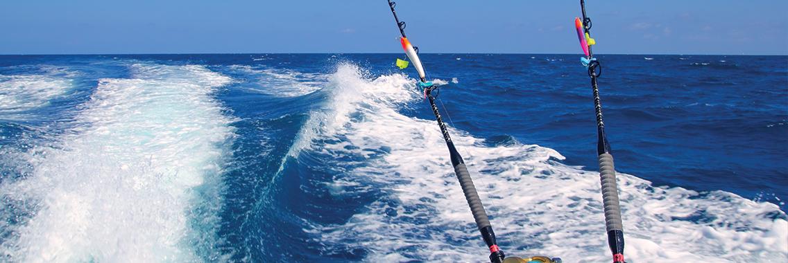 Trolling fishing in dubai , Deep sea