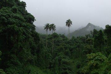 Marae Moana, cook islands ocean sanctuary