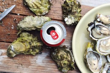 oysters on the half shell from sustainable oyster farming