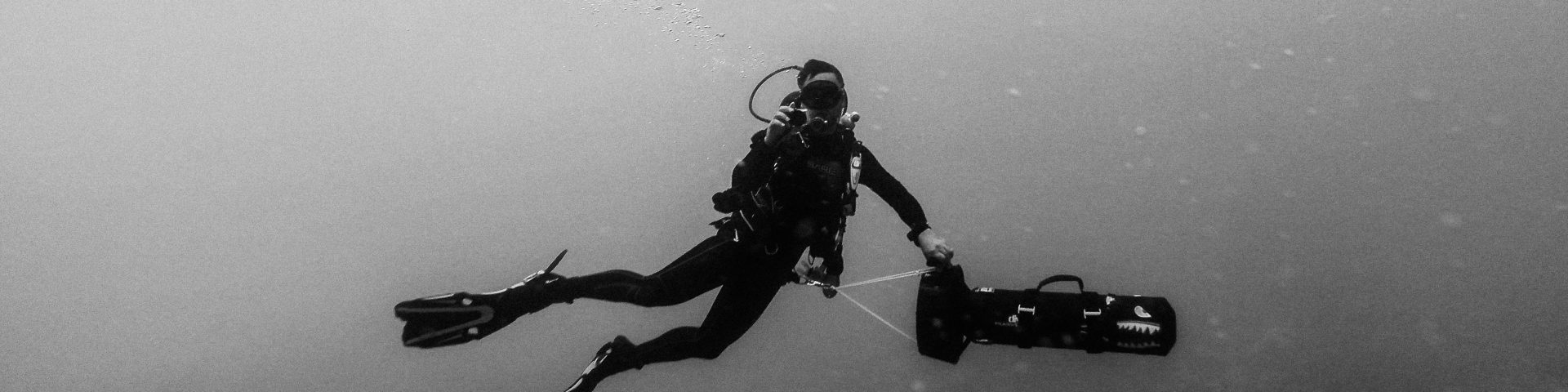 black and white underwater image of a scientist doing field work