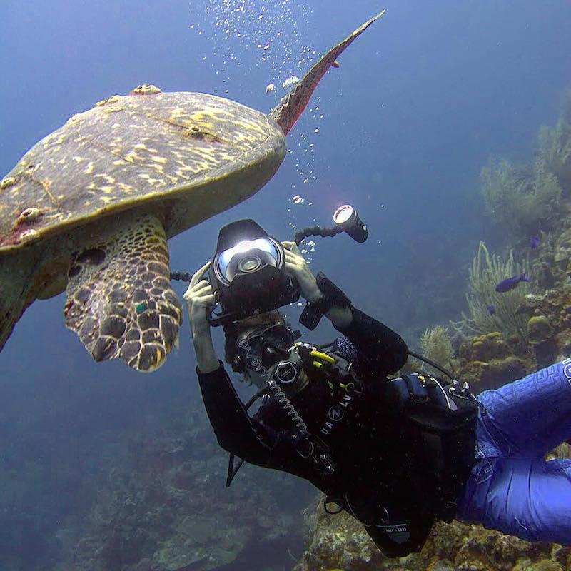 Manu Bustelo and Sea Turtle