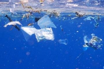 marine waste by snorkelaroundtheworld.com
