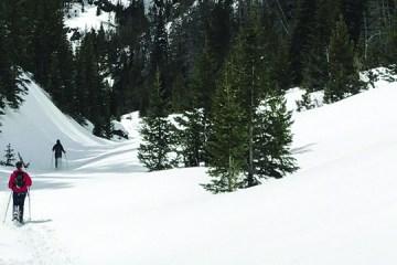 snow in Bozeman, Montana