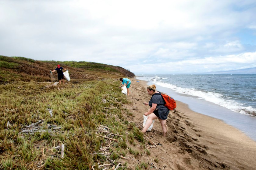 people collecting trash on the beach in maui by Maui Jeff Beige