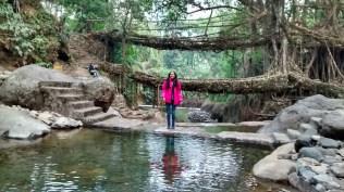 The Double Decker Living Root Bridge