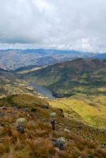 View over Laguna Negra, Paramo de Oseta