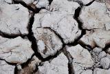 Dry season, Los Llanos